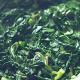 Valche bhajji sukke(Spinach)