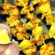 Malai Kabab / Chicken Reshmi Kabab Recipe